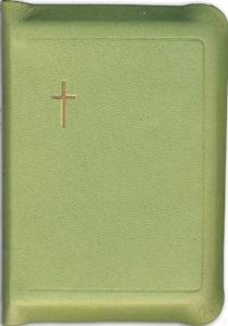 Keskikokoinen Raamattu, vetoketju, reunahakemisto, limenvihreä