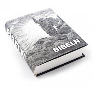 Ruotsi Raamattu, Bibeln 2000, kuvitus