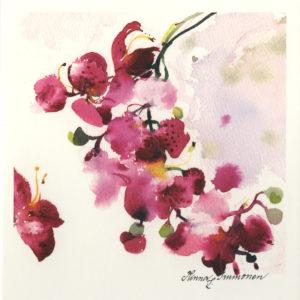 Avattava neliökortti: Orkideanoksa