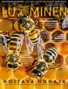 Luominen-lehti (numero 18)