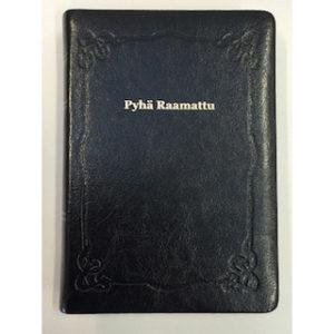 Pyhä Raamattu johdannoin 33/38 (marginaali, musta)