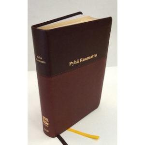 Pyhä Raamattu johdannoin 33/38 (k.v. ruskea)