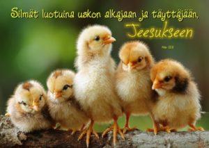 Kortti: Tiput (Hepr.12:2)