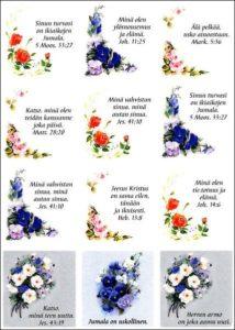 Tarra-arkki, Kukkia , Sinun turvasi..