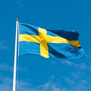 Ruotsinkieliset