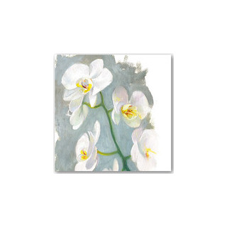 Orkidea (Iso neliötaittokortti kuorella)