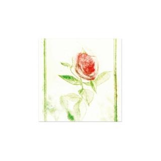 Postikortti: Ruusu sinulle