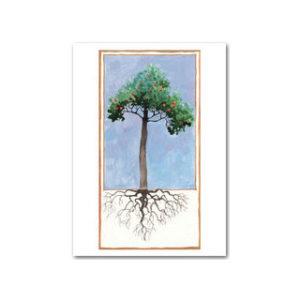 Postikortti: Puu ja juuret