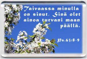 Magneetti: Ps.63:8-9