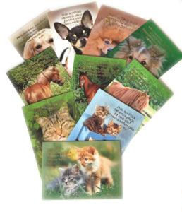 Eläin (hengellinen) -korttisarja 10 kpl lajitelma
