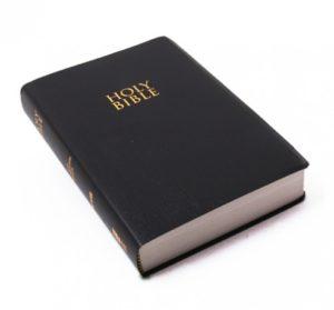 Englanti Raamattu, NIV