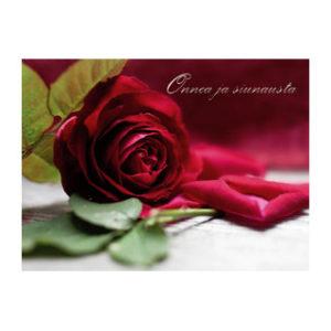 Kortti, Punainen ruusu – Onnea ja siunausta