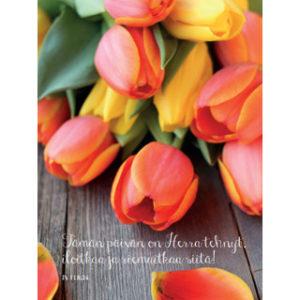 Kortti, Oranssit ja keltaiset tulppaanit – Tämän päivän