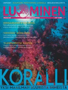 Luominen-lehti (numero 28)
