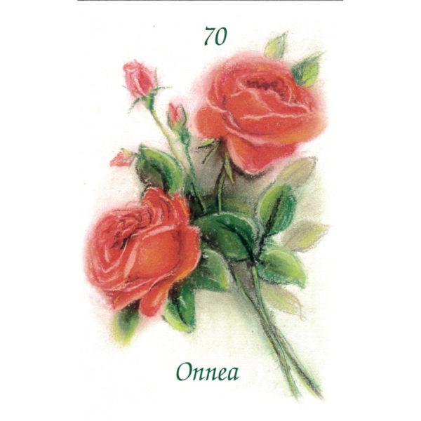 Kortti, Ruusukimppu, Onnea 70 v.