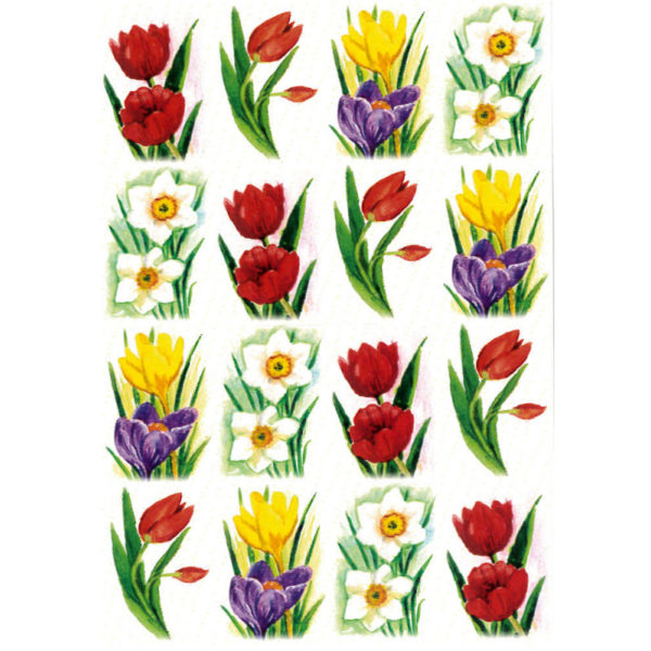Tarra-arkki, Kevään kukkia