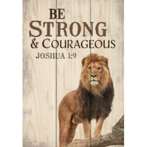 Minikyltti, Be strong and Courageous