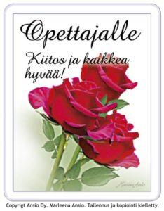 Supermagneetti, Opettajalle (ruusu)