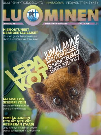 Luominen-lehti (numero 38)