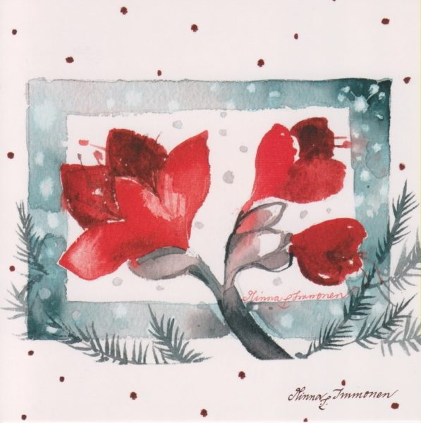 Joulukortti: Amaryllis (neliö)
