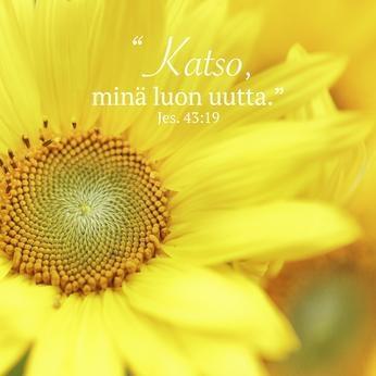 """Jääkaappimagneetti, auringonkukka: """"Katso, minä luon uutta"""" (Jer. 43:19)"""