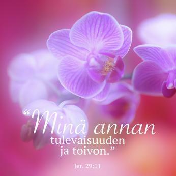 """Jääkaappimagneetti, orkidea: """"Minä annan tulevaisuuden ja toivon."""" (Jer. 29:11)"""